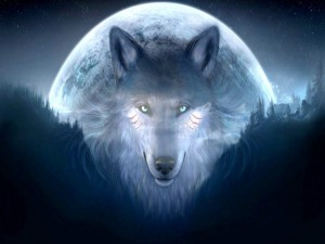 Abstract-wolf-htc-wallpaper